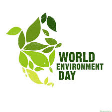 Dr. Akbari message on the occasion of World Environment Day